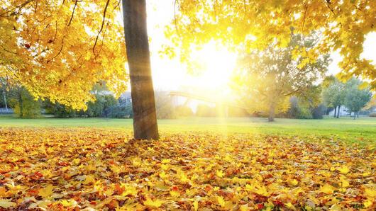 Есенна магия