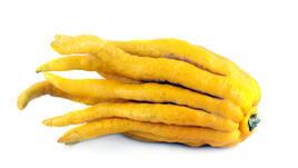 Ръката на Буда става за ядене?