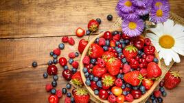 Антиоксидантите - наръчник на начинаещия I част