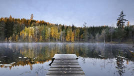 Есен в Швеция