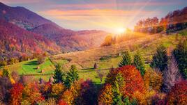 Красотата на есента - (Видео)