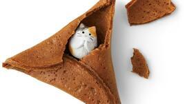 Бисквитки с необикновени късметчета за завършек на всяко хранене!