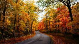 Да се насладиш на есента с велосипед