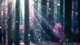 Красивата природа