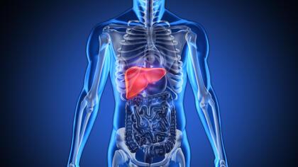 6 суперхрани за здрав черен дроб