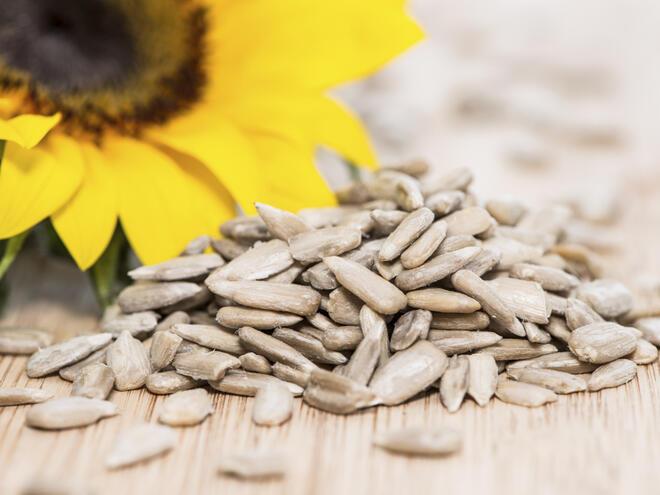 5 причини да ядете слънчогледови семки