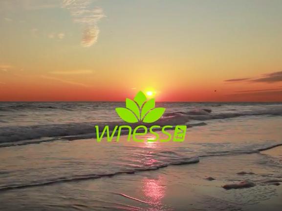 WNESSTV - телевизията, която ни помага да сме по-здрави