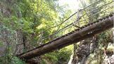 5 екопътеки в България, които да изминете