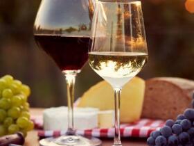 Червеното вино защитава невроните