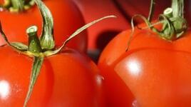 Защо трябва да включите червени храни в менюто си?