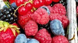 Пресни или замразени плодове и зеленчуци трябва да купуваме?