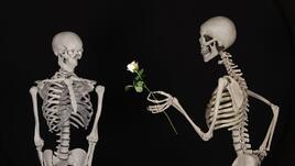Грешки в любовта на всяка от ЗОДИИТЕ