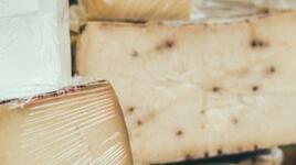 Швейцарското сирене удължава живота