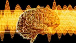 Мозъчни вълни за начинаещи: Серотонин