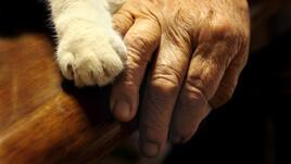 Баба и котка: вечните приятели