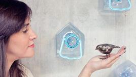 Саксии и къщички за птици от пластмасови бутилки