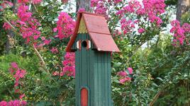 Красиви къщички за крилати обитатели