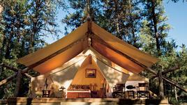 Палатки от страната на чудесата