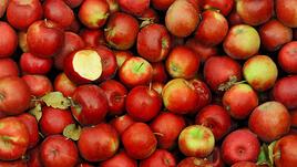 Приказката за грозната ябълка