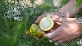 Морска сол и лимон. За лактите